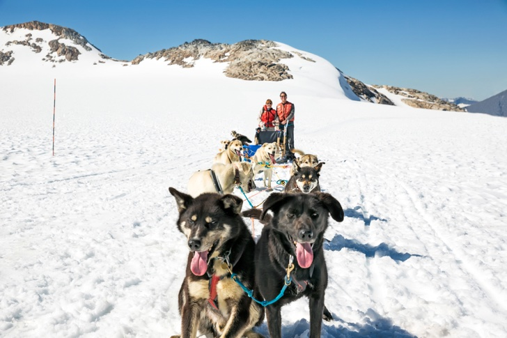 Tourists stand behind a dog sled team in Skagway, Alaska. RM