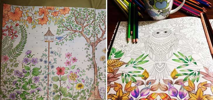 coloring-books-for-adults-johanna-basford-12__880