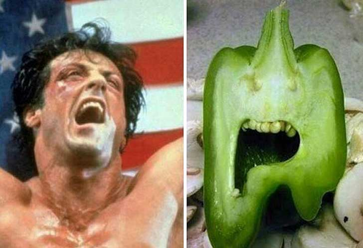 things-that-look-similar-to-each-other-sylvester-stallone-paprika1__700