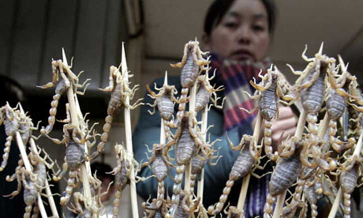 Insect-food-Chinese-woman-selling-s-001
