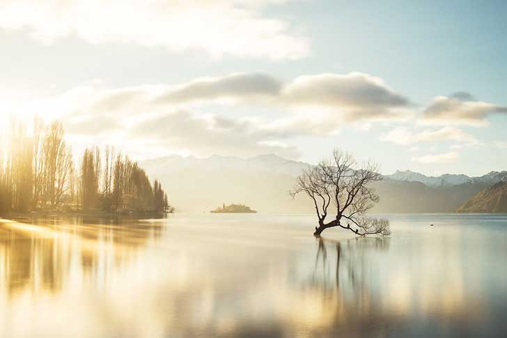 i-spent-a-year-exploring-new-zealand-to-bring-back-these-photos-and-it-blew-my-mind-28__880