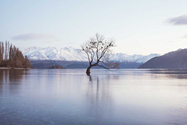i-spent-a-year-exploring-new-zealand-to-bring-back-these-photos-and-it-blew-my-mind-30__880