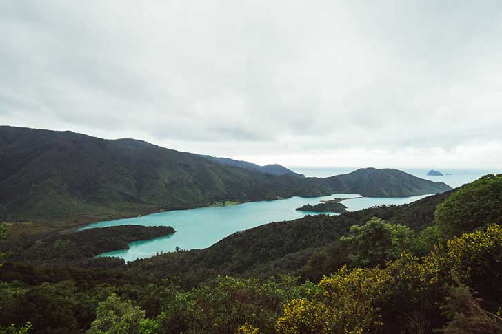 i-spent-a-year-exploring-new-zealand-to-bring-back-these-photos-and-it-blew-my-mind-3__880