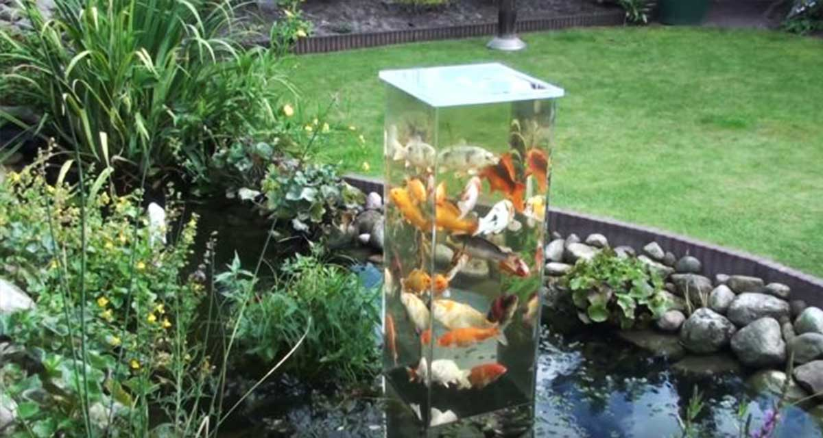 Este tipo voltea una pecera de vidrio dentro de un for Estanques artificiales para peces