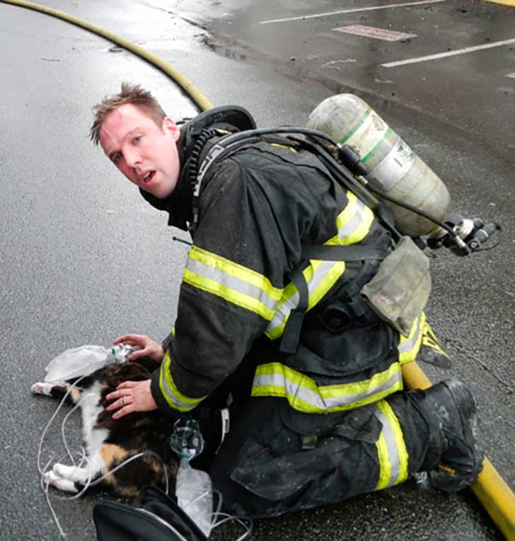 firefighters-rescuing-animals-saving-pets-16-5729c63508d5d__605