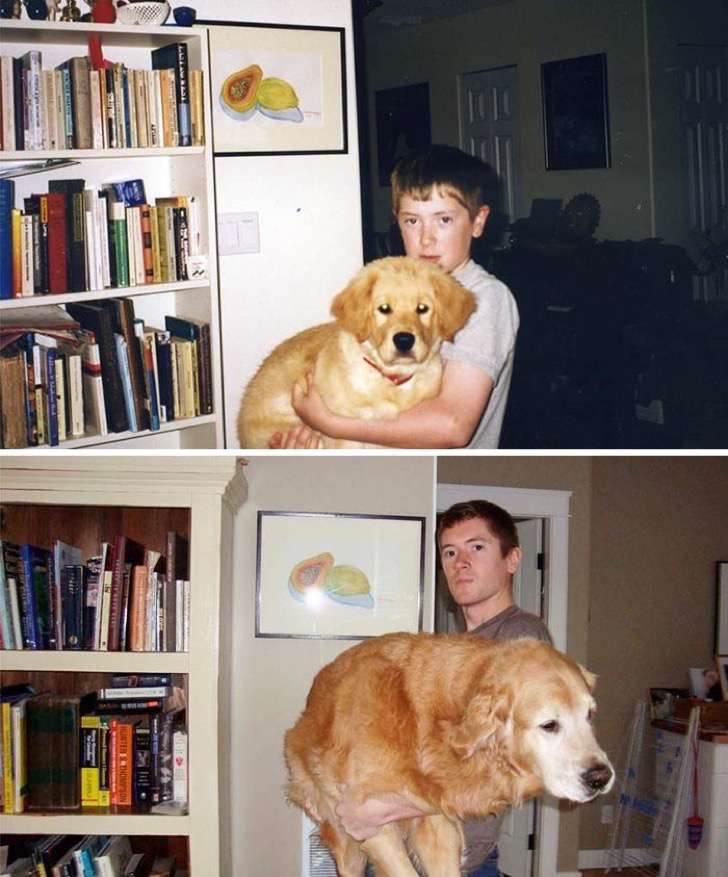 before-after-dogs-growing-up-together-with-owners-1-58256f4669f1a__700-2