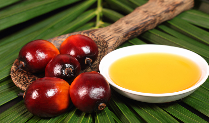 bigstock-Oil-Palm-Fruit-And-Cooking-Oil-47826356