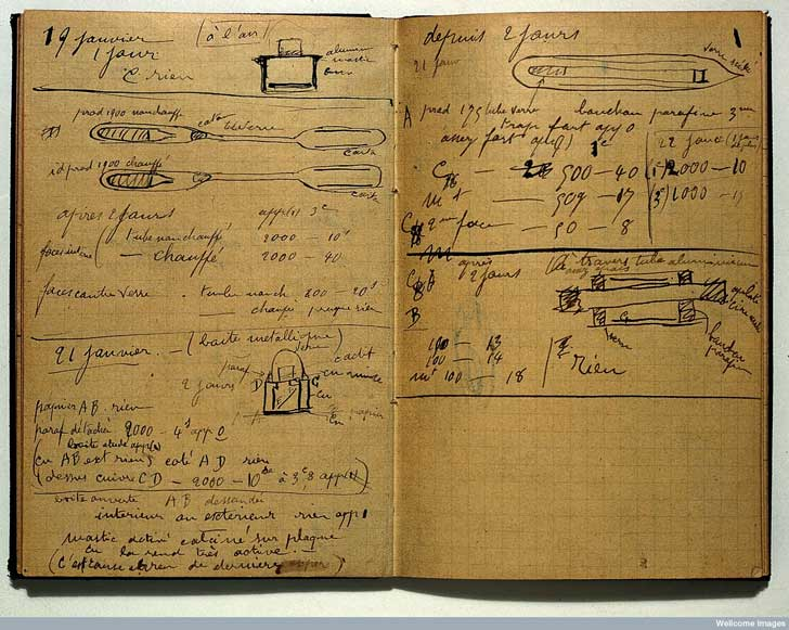 curie-notebook