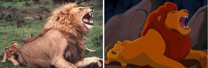 NTD animated real life doubles 23 2 2 - Fotos de animales de películas en la vida real