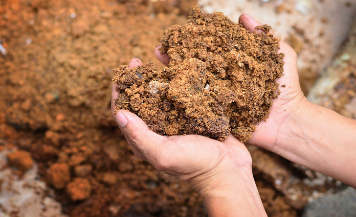 Como-hacer-fertilizantes-organicos-2